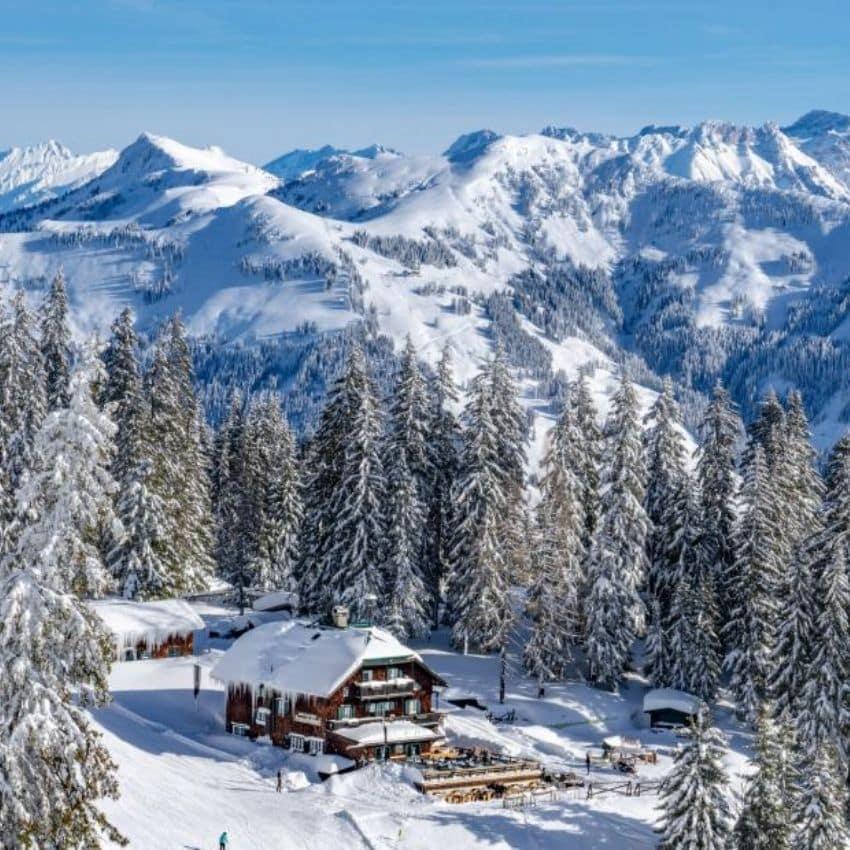 Hytte og skov Kitzbühel