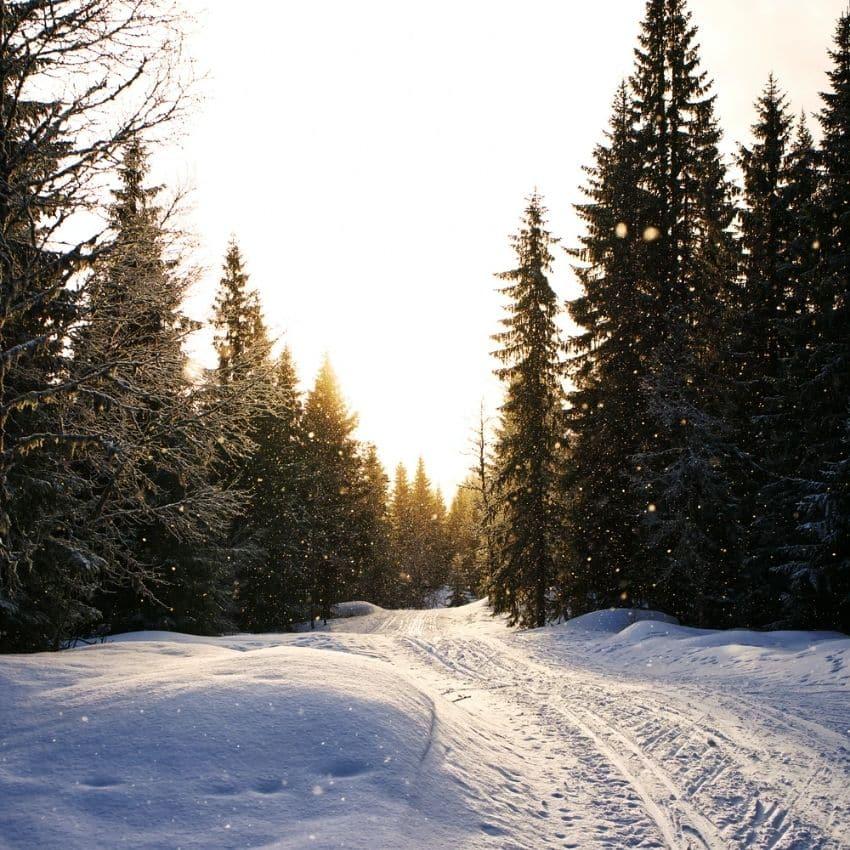 Flot udsigt skiferie Norge